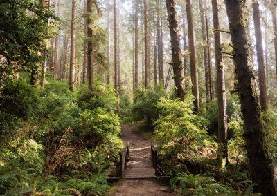 Sondage sur l'action municipale canadienne en matière de biodiversité