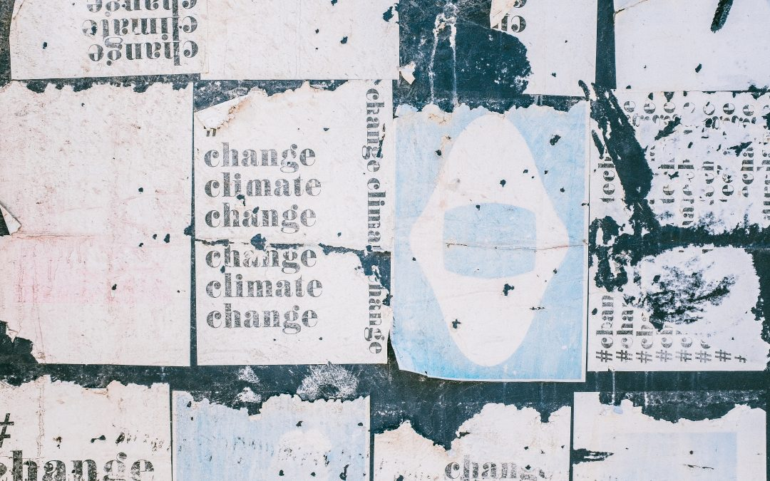 Adaptation Changemakers Project